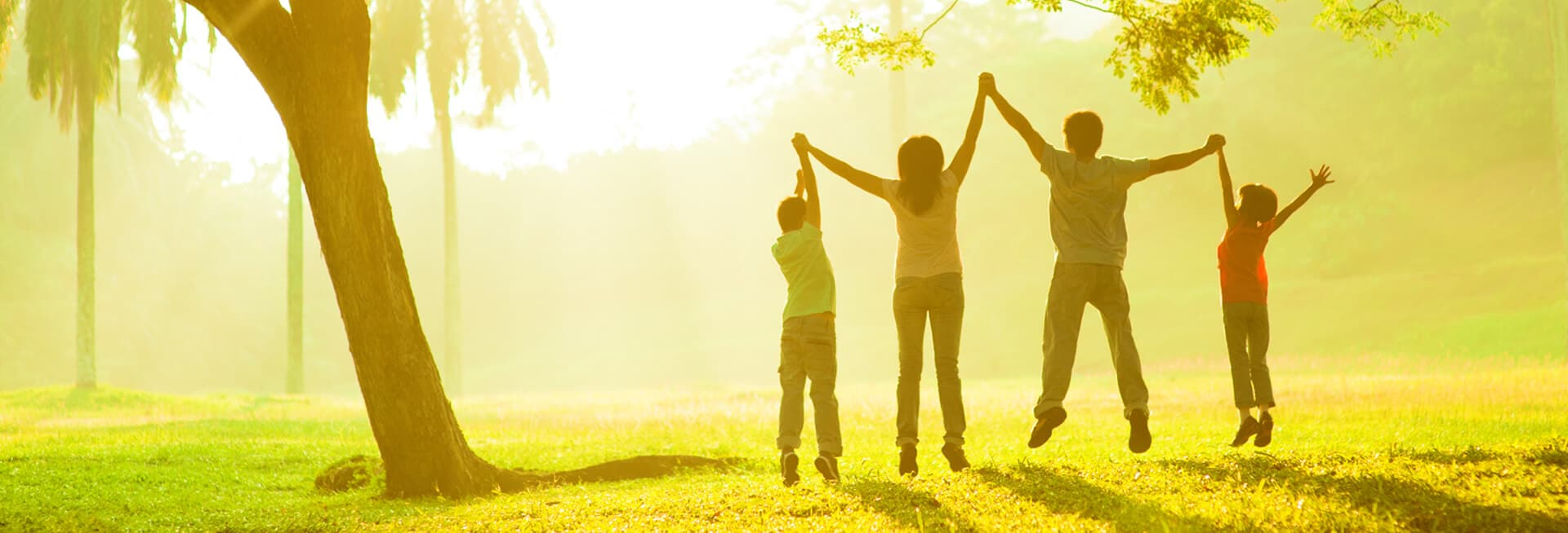 healthy and happy family holding hands in the sun